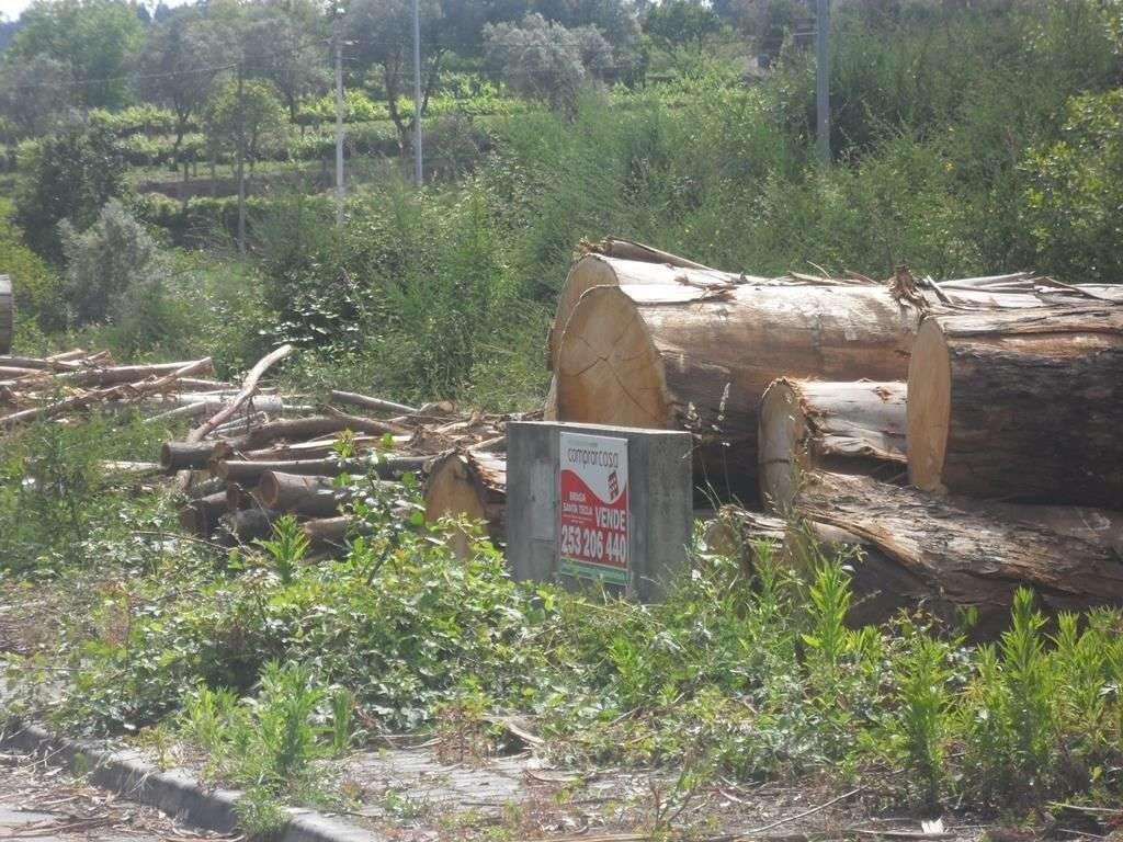 Terreno para comprar, Escariz (São Mamede) e Escariz (São Martinho), Braga - Foto 1