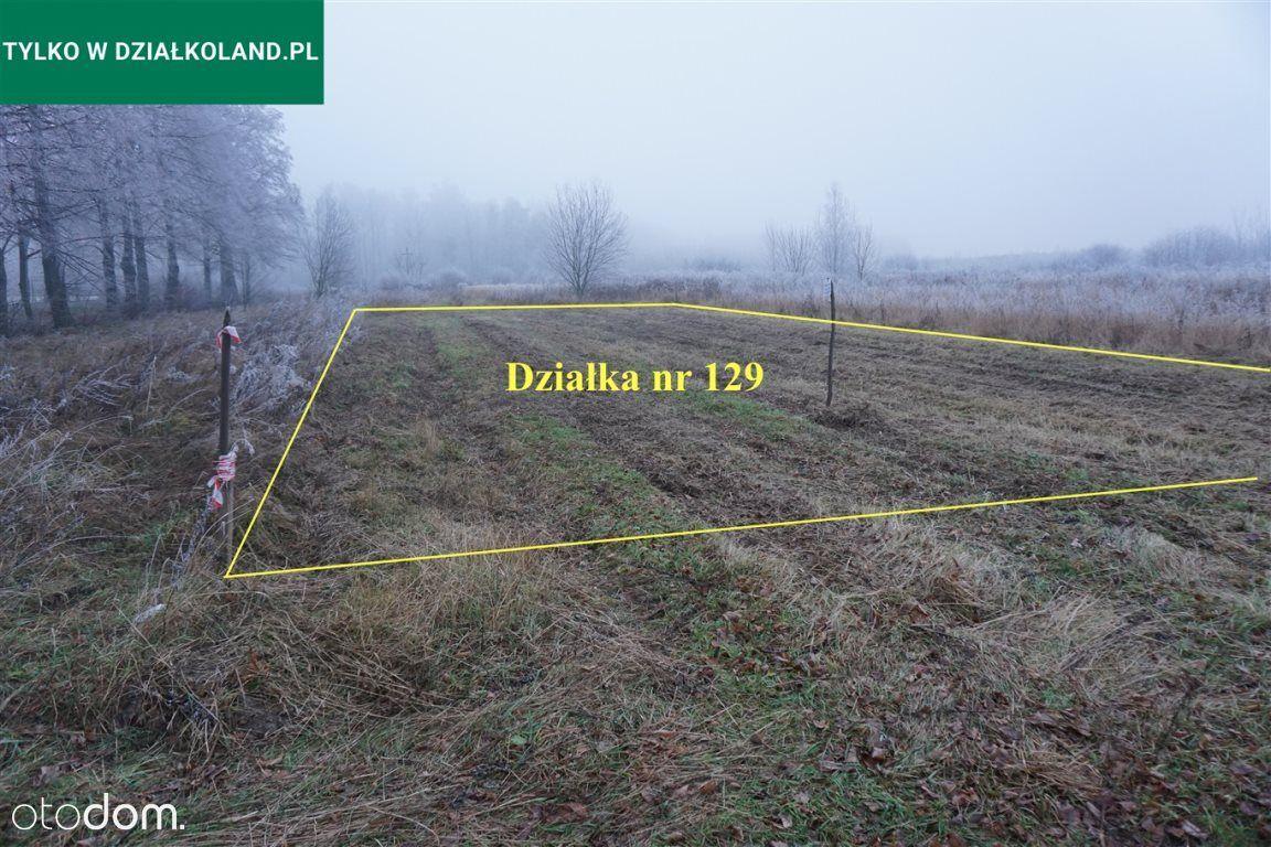Działka rolna nr 129,Cieleśnica Pgr, Rokitno