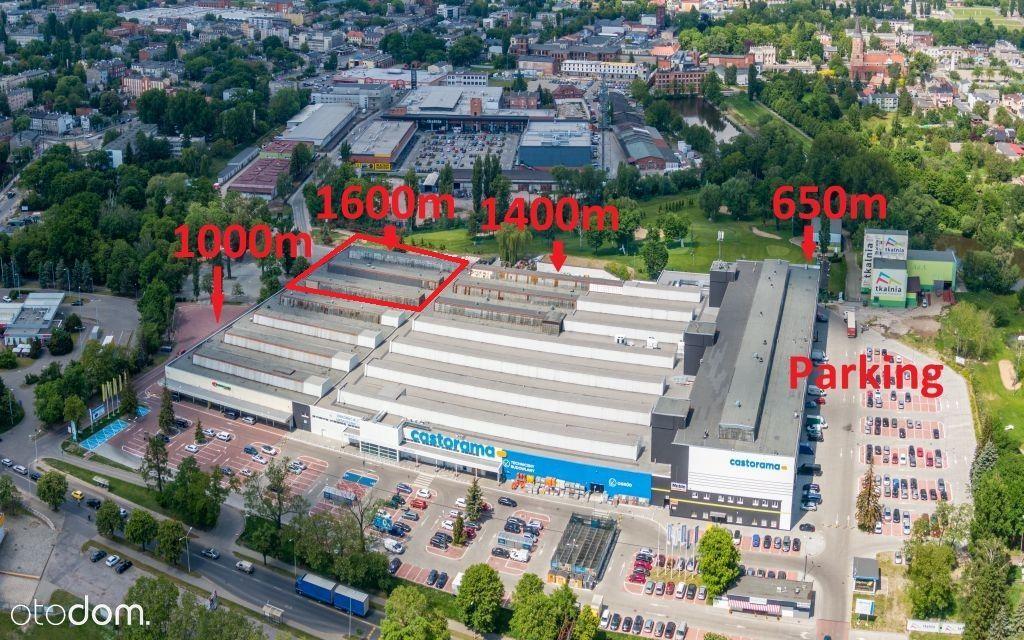magazyn/produkcja/handel 1 600 m2naparterze