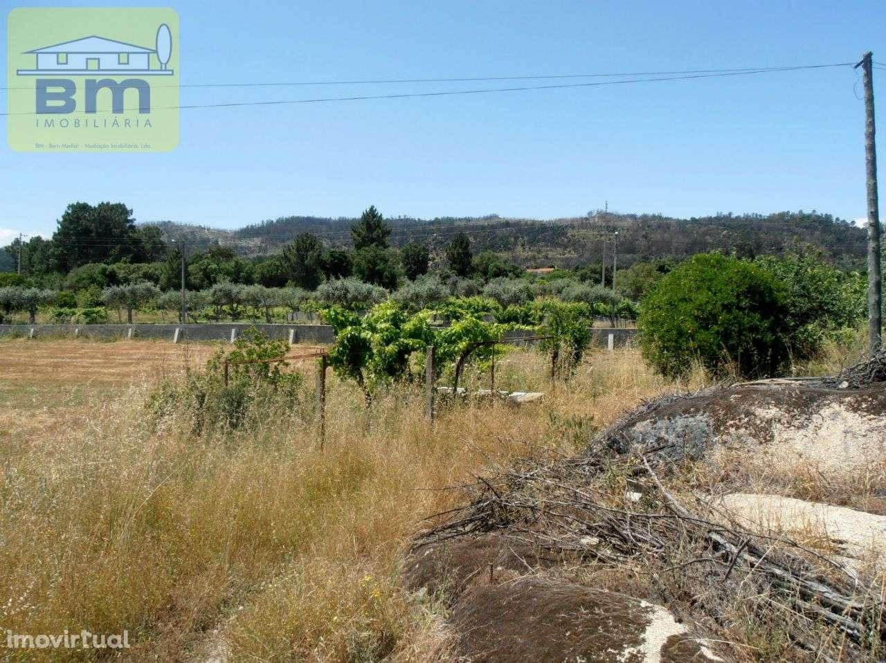 Quintas e herdades para comprar, Alcains, Castelo Branco - Foto 18