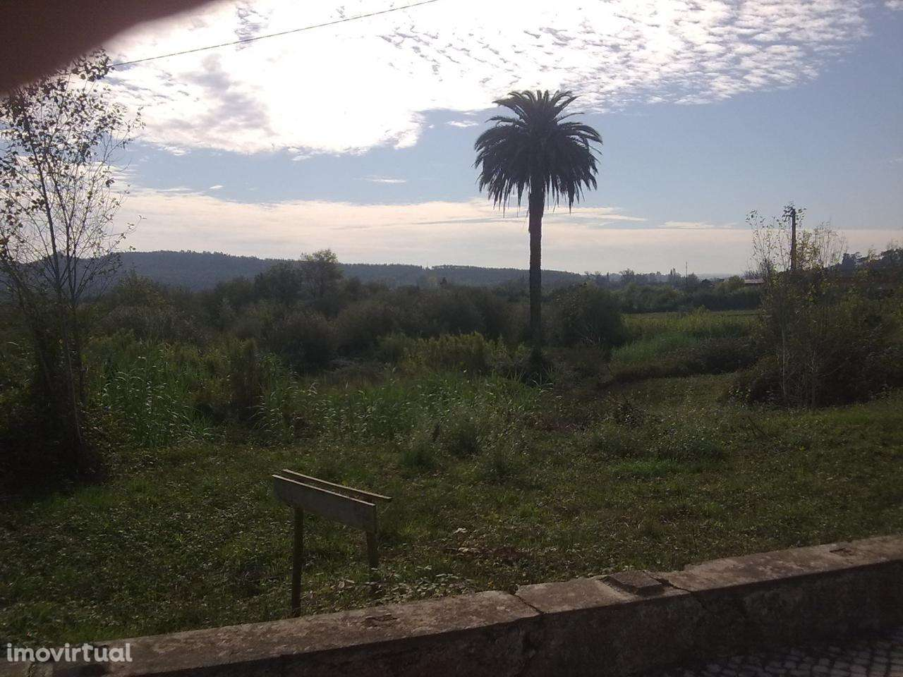 Quintas e herdades para comprar, Soure, Coimbra - Foto 4