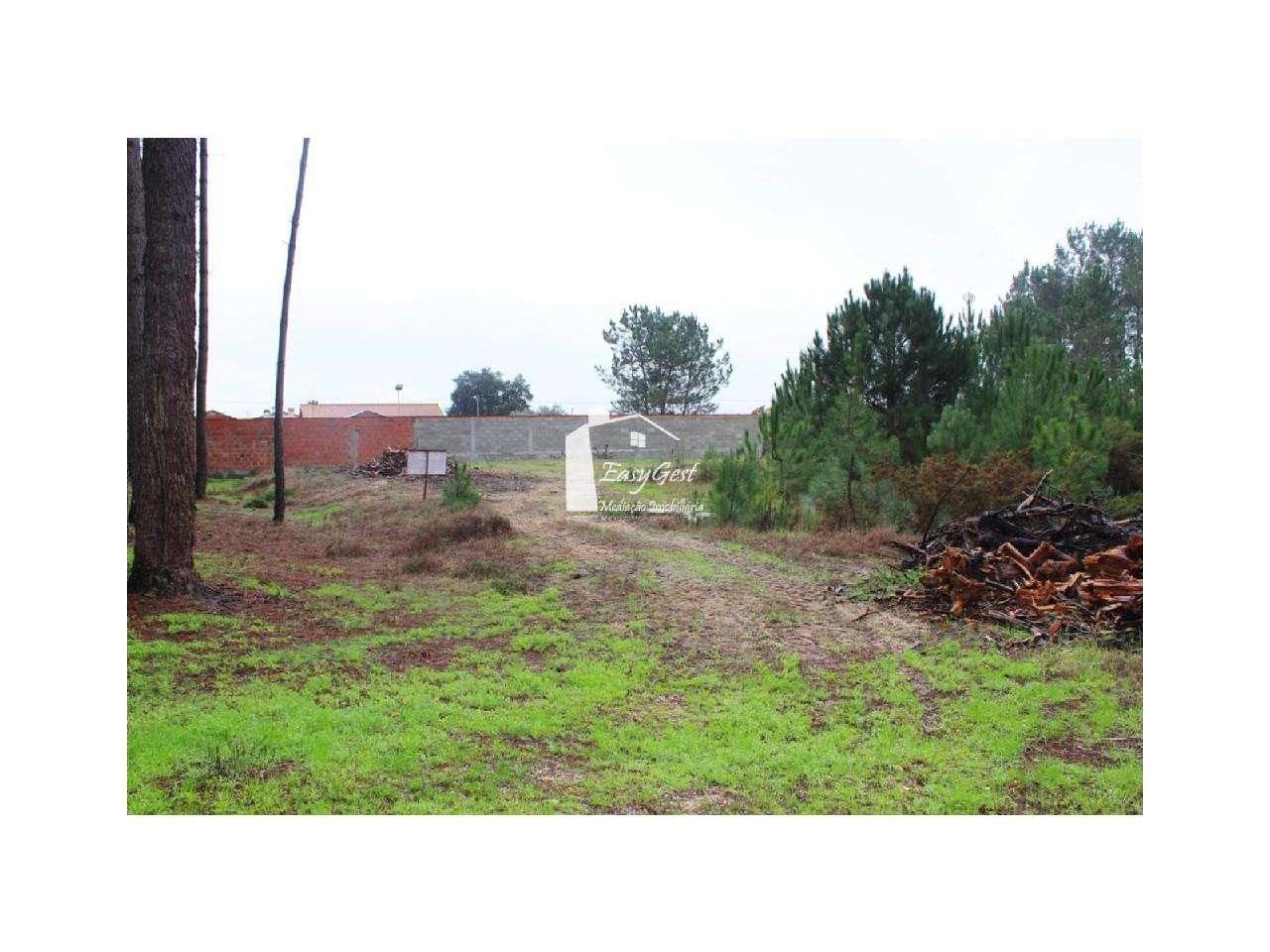Terreno para comprar, Monte Redondo e Carreira, Leiria - Foto 7