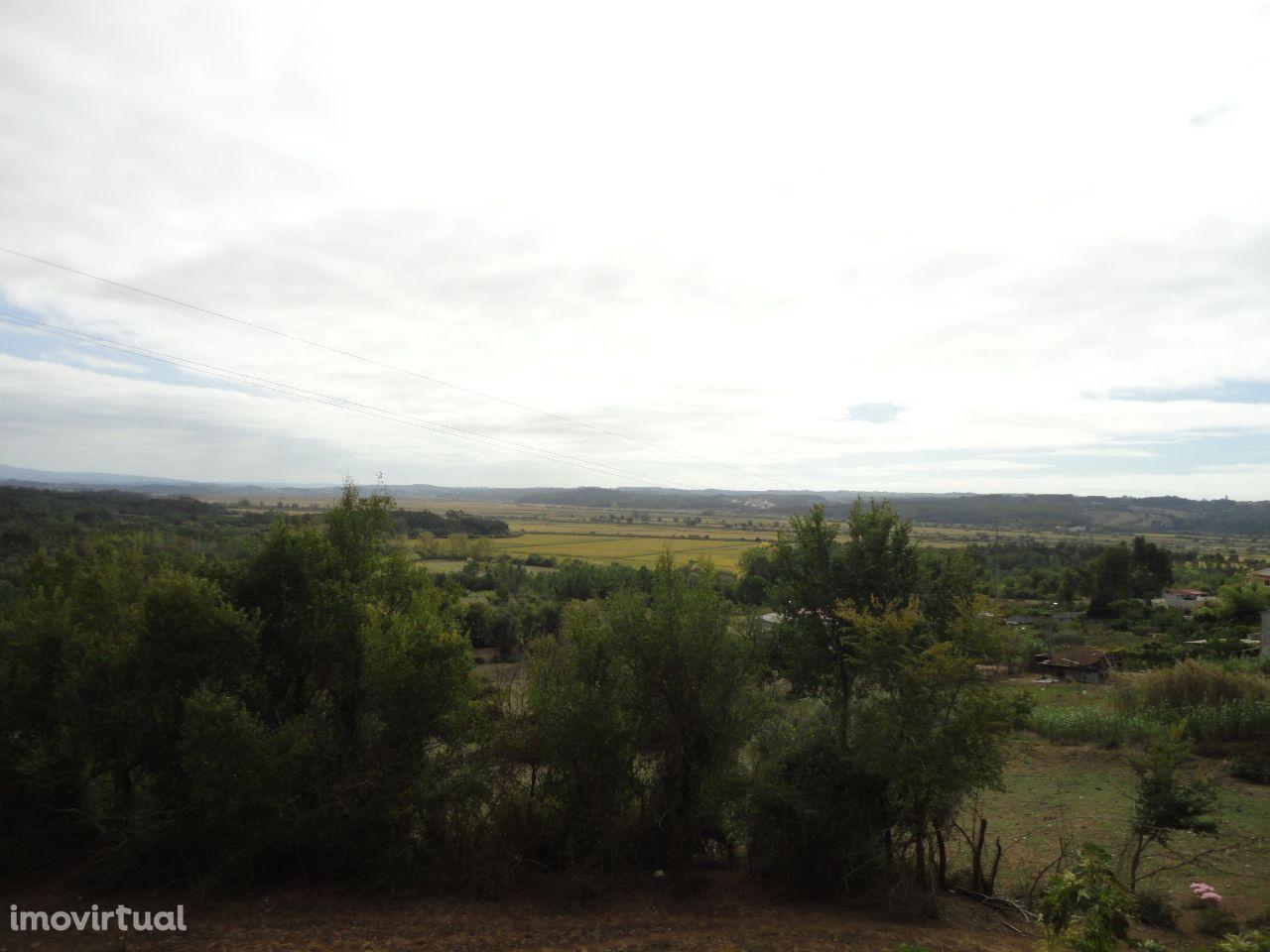 Quintas e herdades para comprar, Alfarelos, Soure, Coimbra - Foto 6