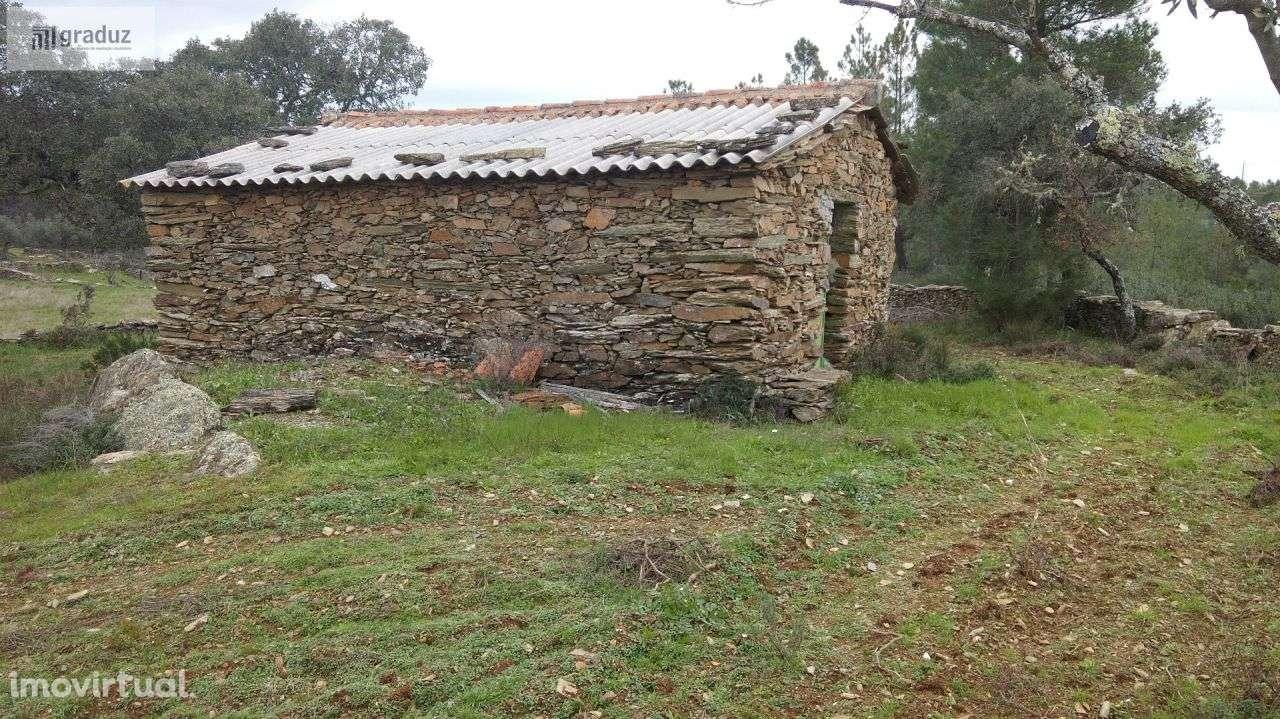 Quintas e herdades para comprar, Benquerenças, Castelo Branco - Foto 1