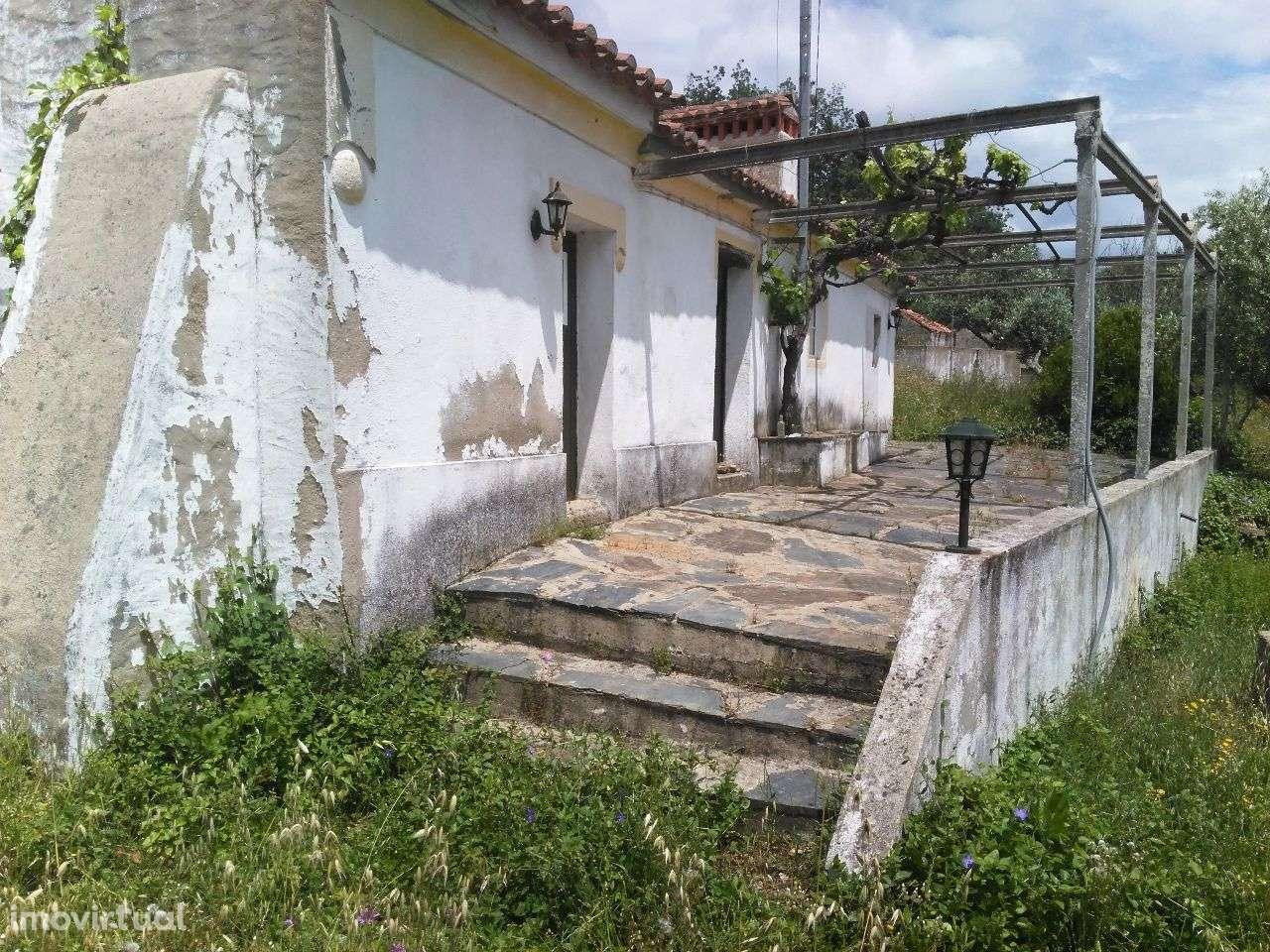Quintas e herdades para comprar, Alegrete, Portalegre - Foto 3