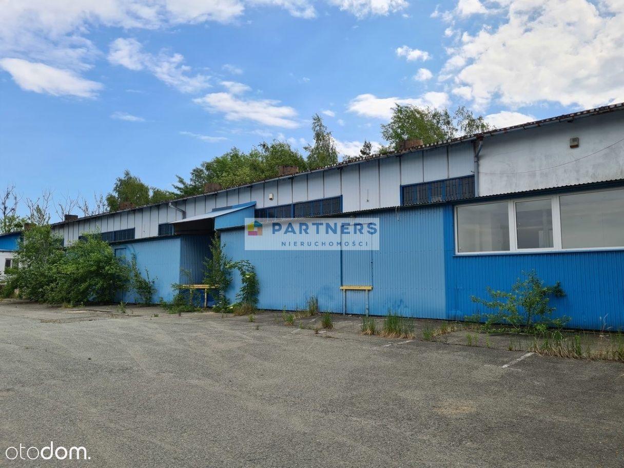 Lokal użytkowy, 1 650 m², Trzebnica