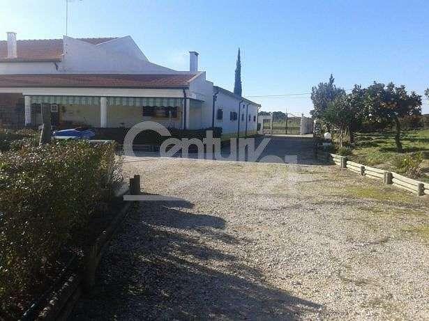 Quintas e herdades para comprar, Branca, Santarém - Foto 9