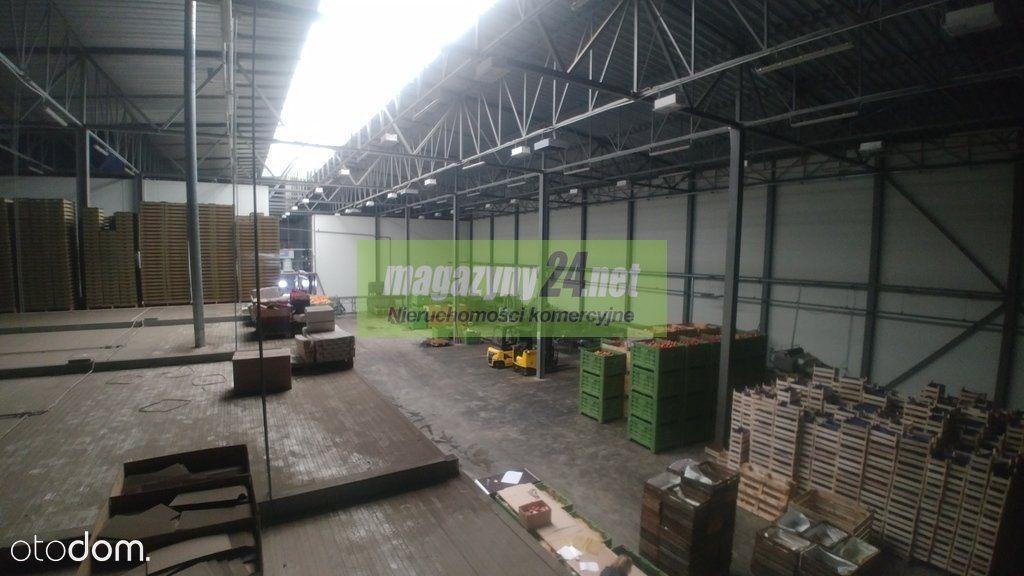 Hala Produkcyjna 3000 m2