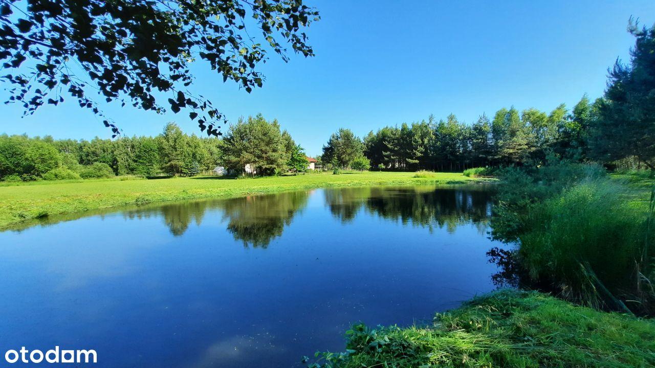 Dom z dużą działką, staw rybny i las.