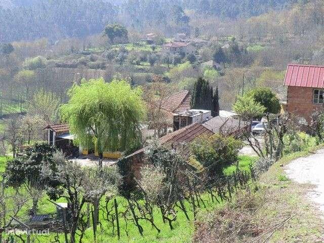 Quintas e herdades para comprar, Fataunços e Figueiredo das Donas, Viseu - Foto 1