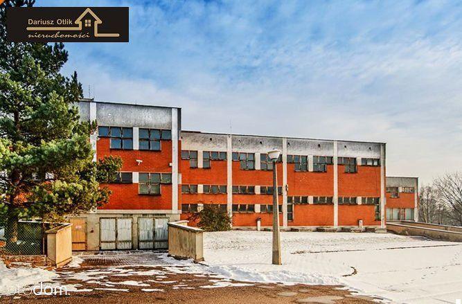 Lokal użytkowy, 5 987 m², Mysłowice