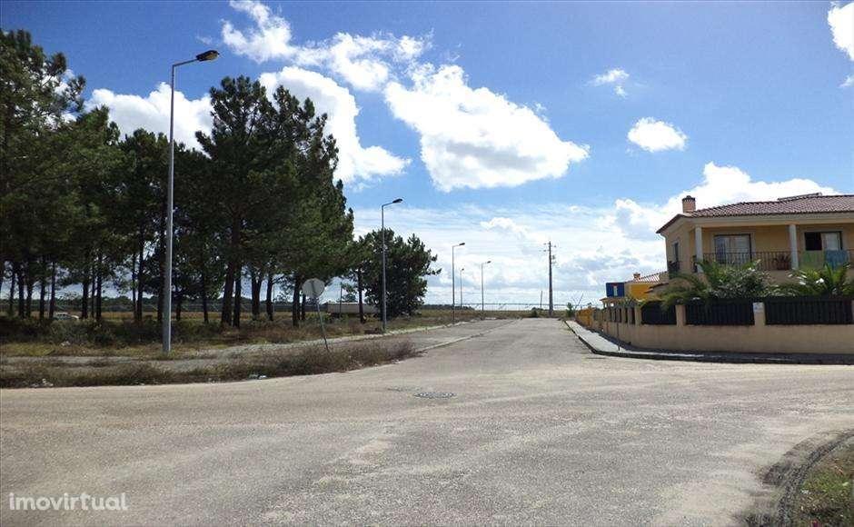 Terreno para comprar, Salvaterra de Magos e Foros de Salvaterra, Santarém - Foto 4