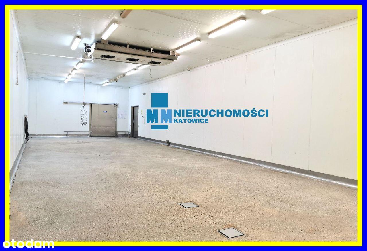 Magazyny, chłodnie, biura wynajem Katowice 420 m2