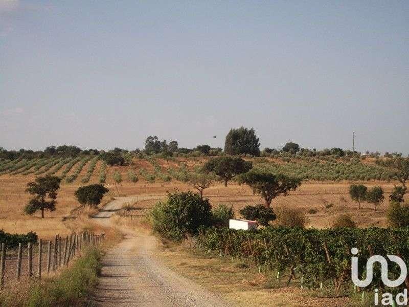 Terreno para comprar, Fronteira - Foto 7