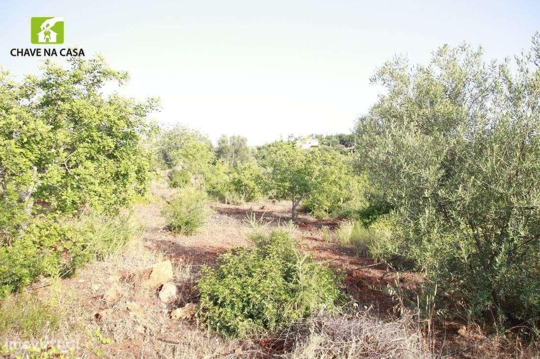 Terreno para comprar, Moncarapacho e Fuseta, Faro - Foto 13