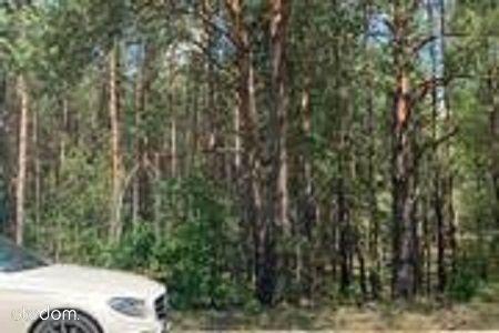 1,55 zł za metr działki leśno- rolnej.