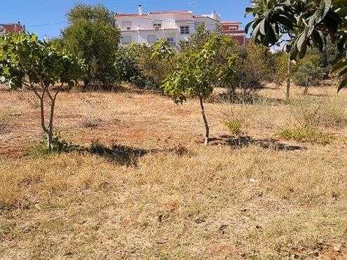 Moradia para comprar, Estômbar e Parchal, Lagoa (Algarve), Faro - Foto 16