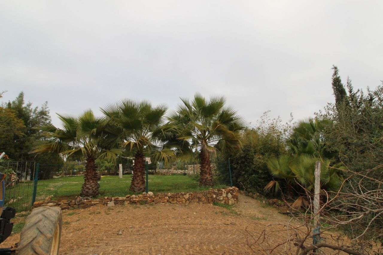 Quintas e herdades para comprar, Aljezur, Faro - Foto 14