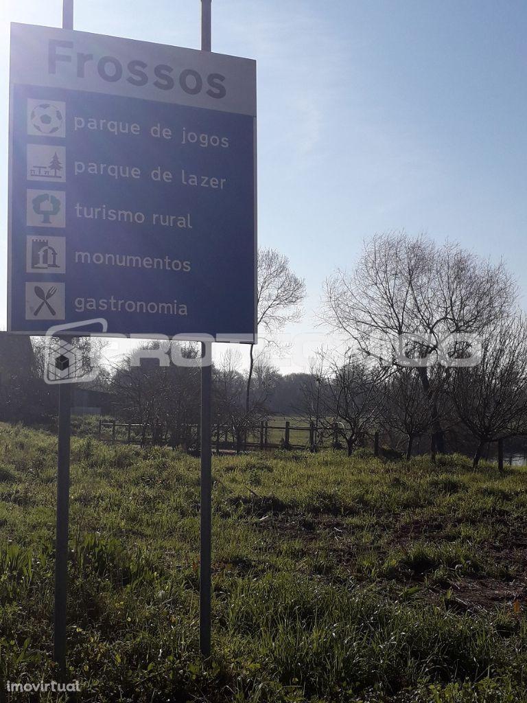 Terreno para comprar, Albergaria-a-Velha e Valmaior, Albergaria-a-Velha, Aveiro - Foto 14