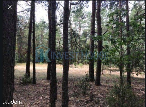 Działka leśna w gm. Długosiodło