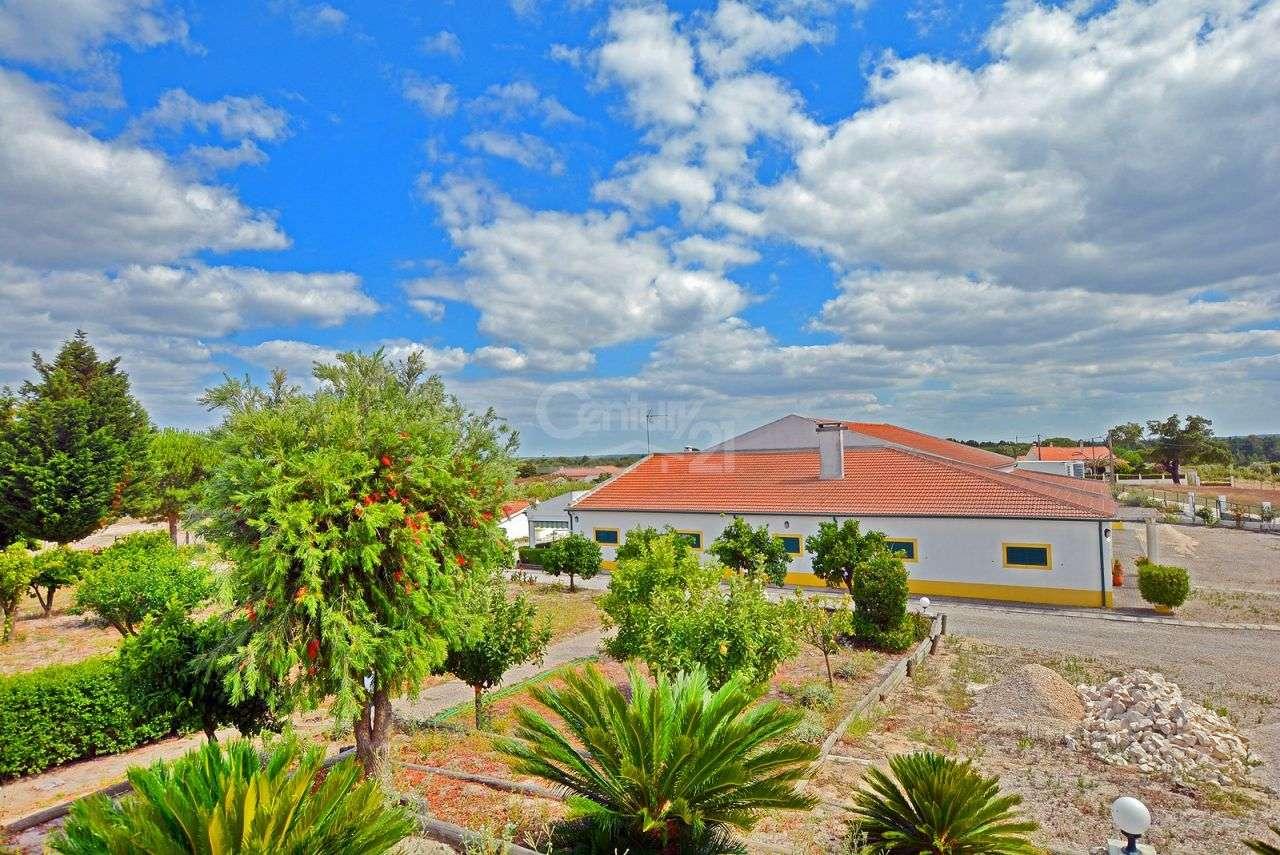 Quintas e herdades para comprar, Branca, Coruche, Santarém - Foto 38
