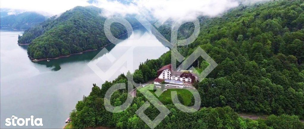 Oportunitate de investitie Padure Transfagarasan TV024