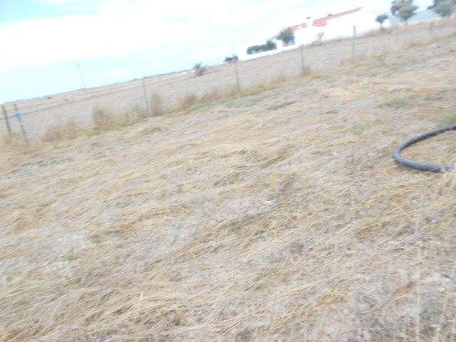 Terreno para comprar, Campo e Campinho, Évora - Foto 9