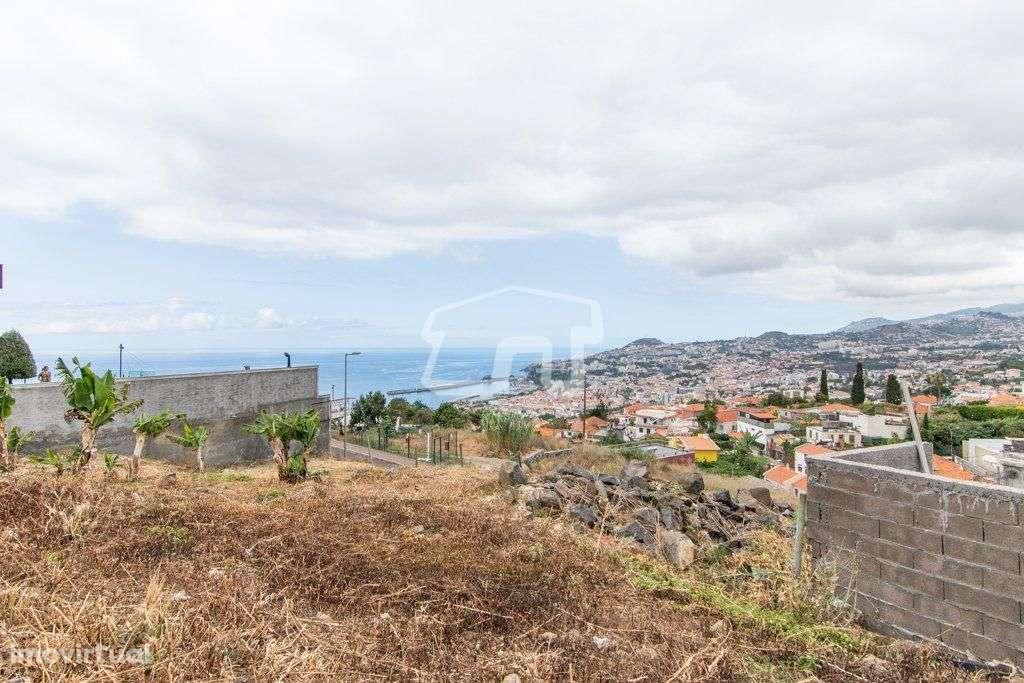 Terreno para comprar, São Martinho, Funchal, Ilha da Madeira - Foto 15