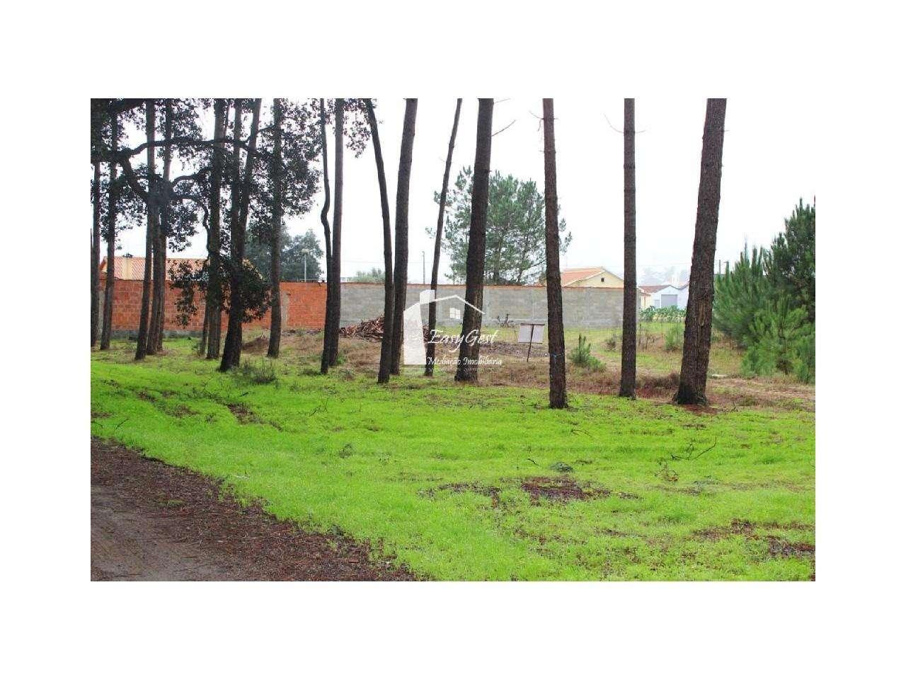 Terreno para comprar, Monte Redondo e Carreira, Leiria - Foto 15