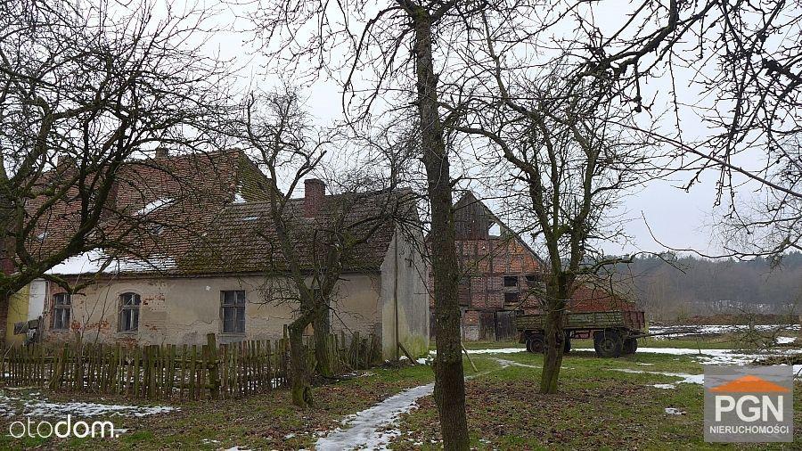 Dom z dużą działką Gryfice