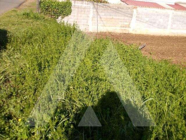 Terreno para comprar, Recardães e Espinhel, Aveiro - Foto 3