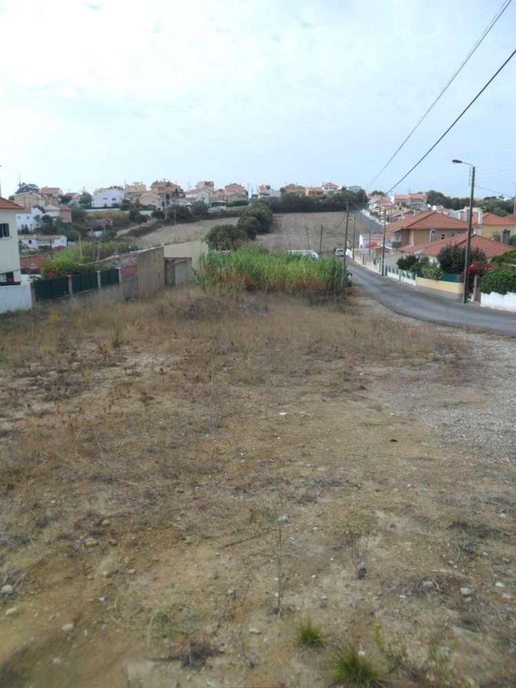 Terreno para comprar, Cascais e Estoril, Lisboa - Foto 2