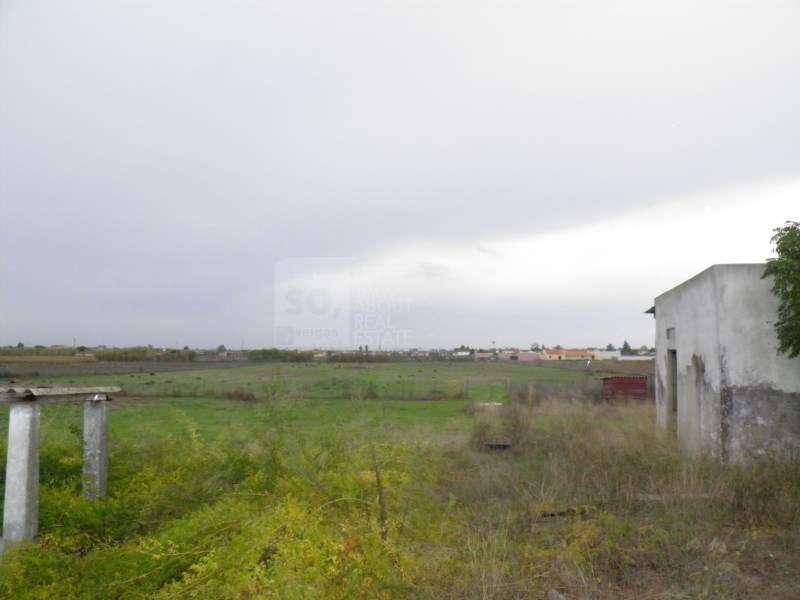 Quintas e herdades para comprar, Poceirão e Marateca, Setúbal - Foto 6