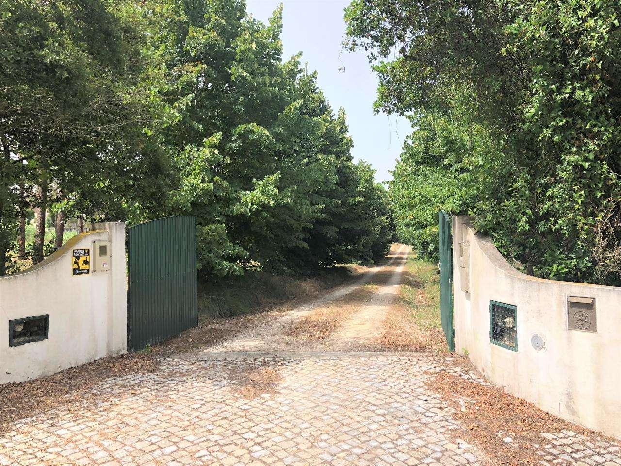 Quintas e herdades para comprar, Parceiros e Azoia, Leiria - Foto 9