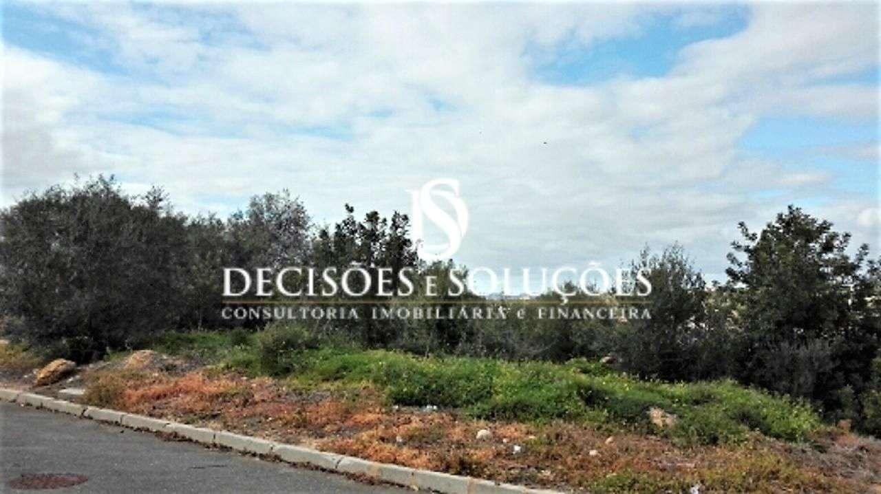 Terreno para comprar, Alcantarilha e Pêra, Silves, Faro - Foto 7