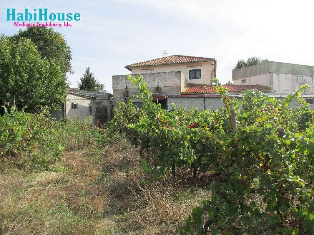 Quintas e herdades para comprar, Silgueiros, Viseu - Foto 14
