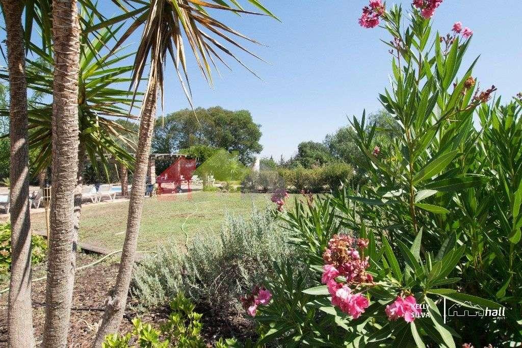 Quintas e herdades para comprar, Azinheira dos Barros, Setúbal - Foto 15