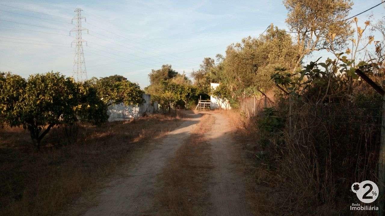 Quintas e herdades para comprar, Palmela, Setúbal - Foto 15