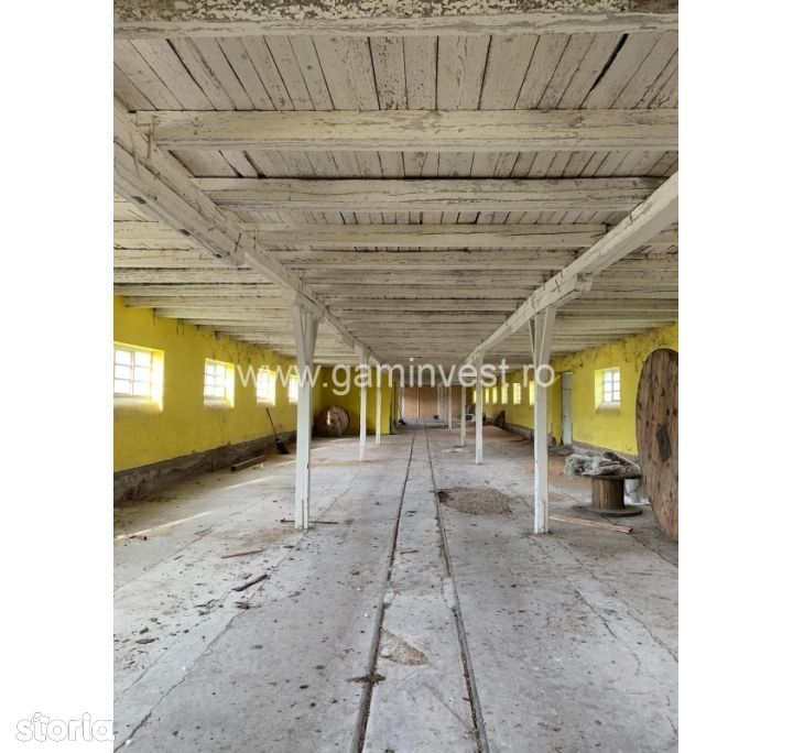 GAMINVEST - Hala de inchiriat, Bors, Bihor A1550