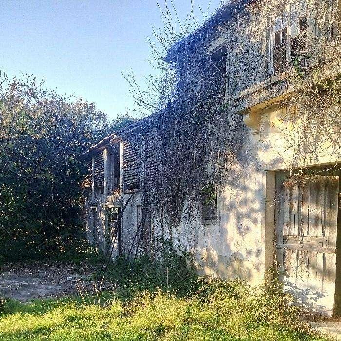 Quintas e herdades para comprar, Vila de Cucujães, Aveiro - Foto 7