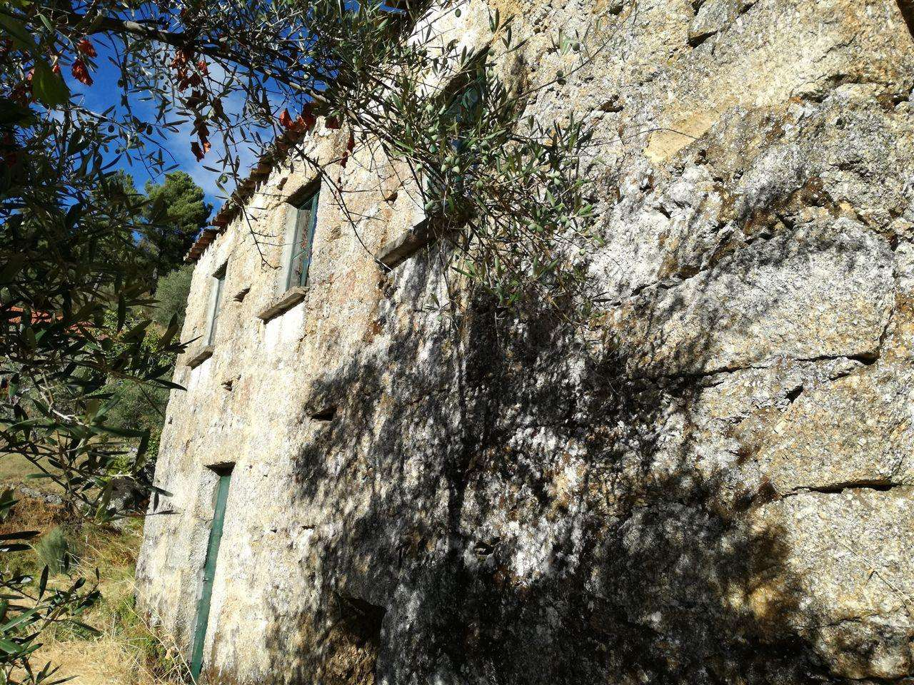 Quintas e herdades para comprar, Teixoso e Sarzedo, Castelo Branco - Foto 4