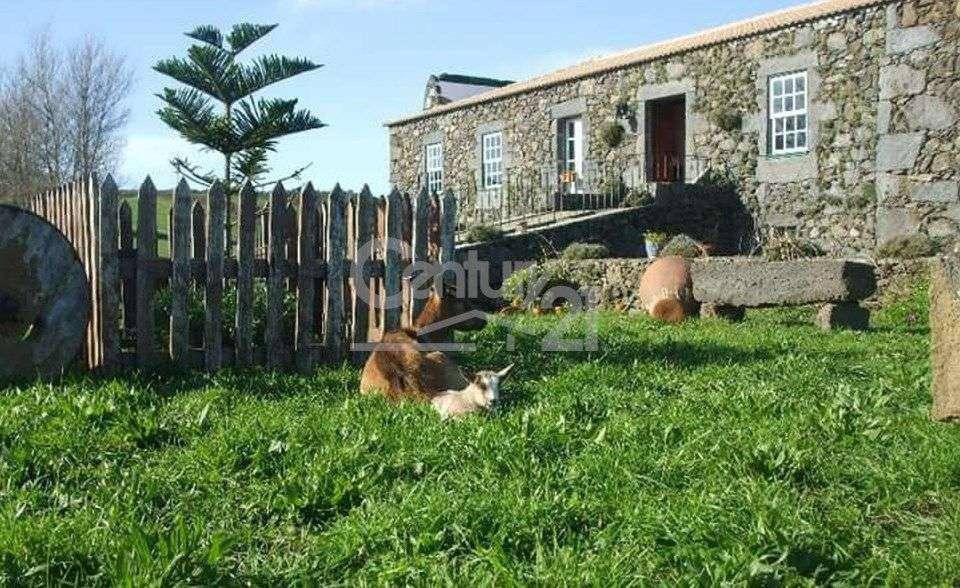 Loja para arrendar, Guadalupe, Santa Cruz da Graciosa, Ilha da Graciosa - Foto 2