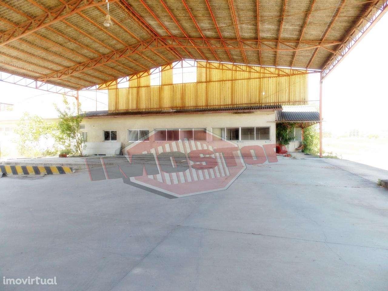 Armazém para comprar, Oliveira do Bairro - Foto 6