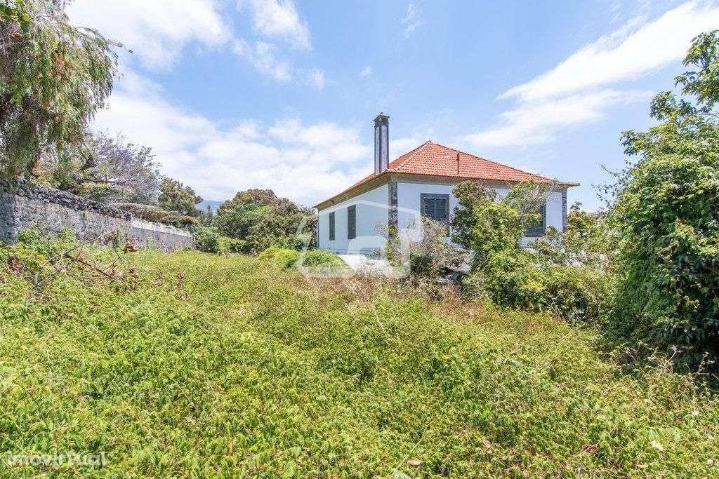 Quintas e herdades para comprar, São Martinho, Ilha da Madeira - Foto 15