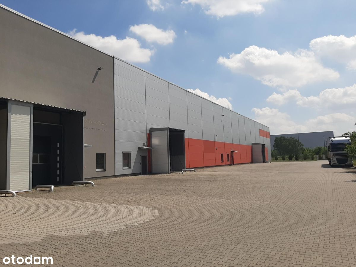Hala/Magazyn, 141 m², Poznań