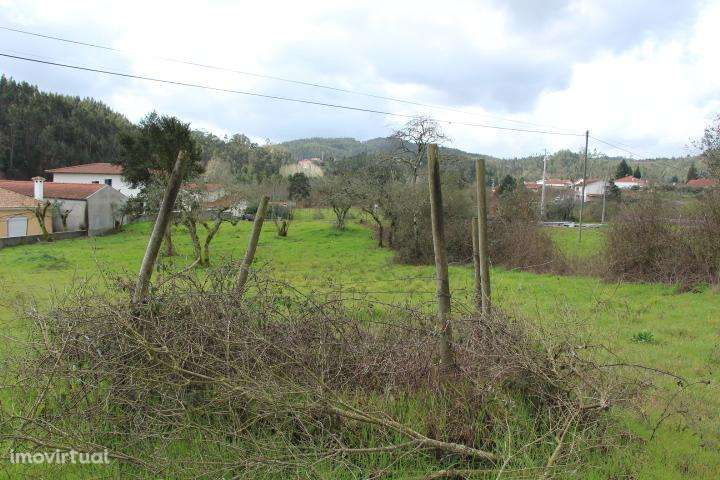 Terreno para comprar, Mortágua, Vale de Remígio, Cortegaça e Almaça, Viseu - Foto 6