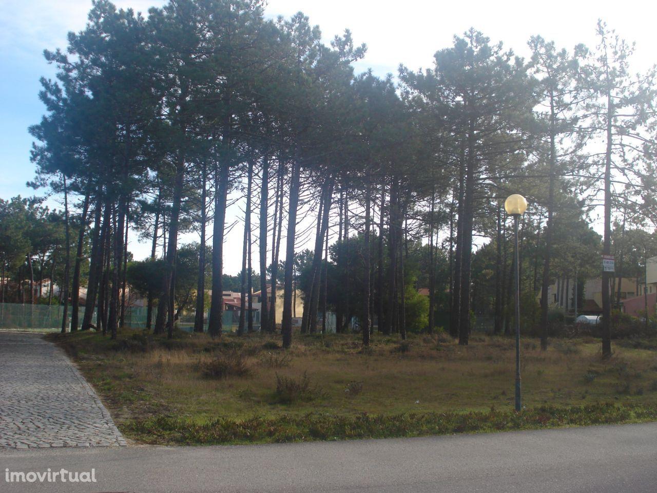 Praia de Mira - Mira Villas terreno para moradia