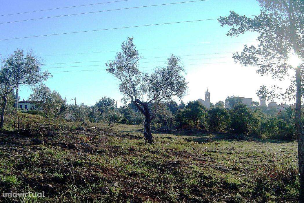 Terreno para comprar, Casais e Alviobeira, Santarém - Foto 2