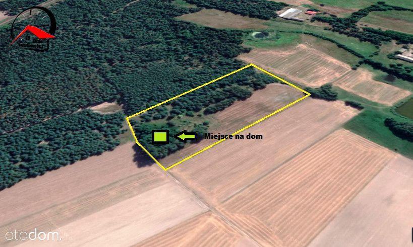 2.6 ha działka rolno/siedliskowa .