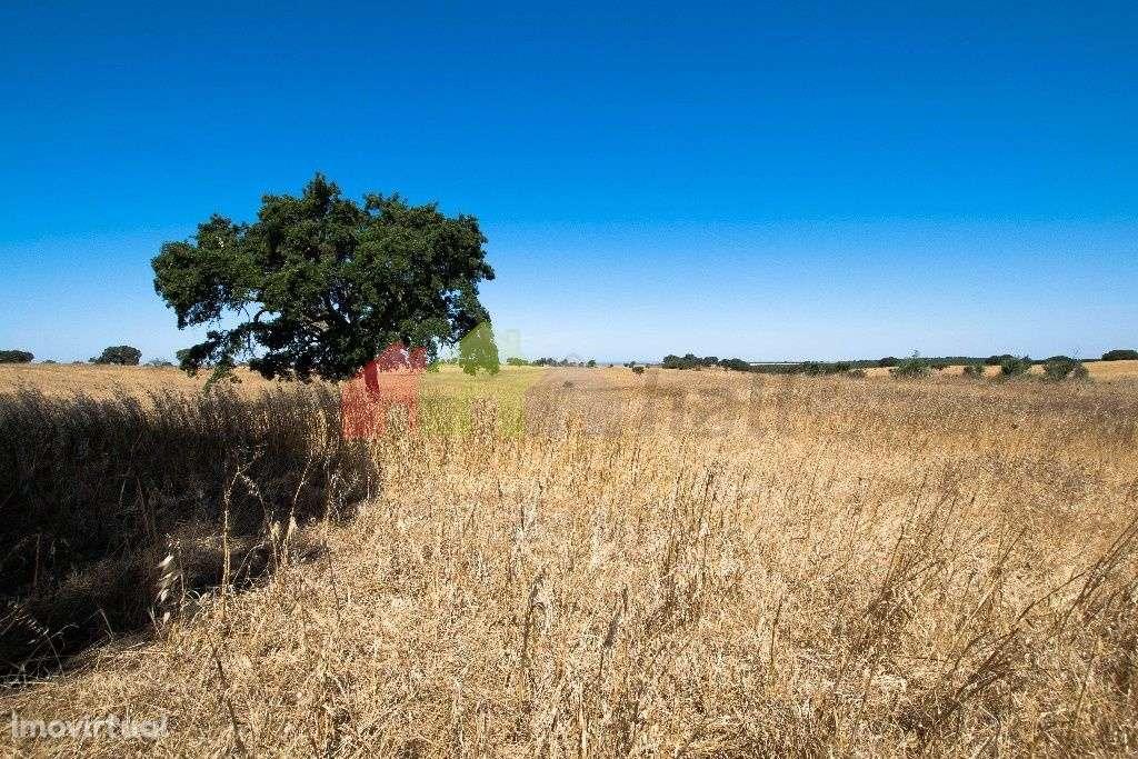 Terreno para comprar, Messejana, Aljustrel, Beja - Foto 5